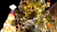 panning and focus: decorated Christmas trees at night video