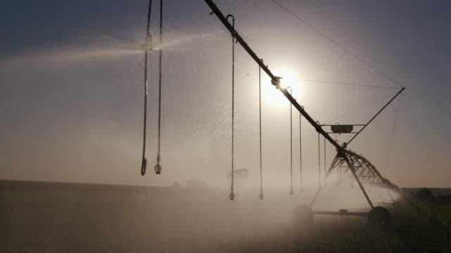 Panning backlit view of centre pivot irrigatiing vegetables video