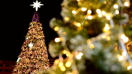 panning: decorated Christmas tree behind other one at night video