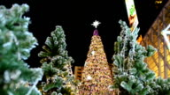 panning:  decorated Christmas tree between other trees video