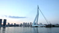 HD Panning: Erasmus bridge over the river Meuse Rotterdam, Netherlands video