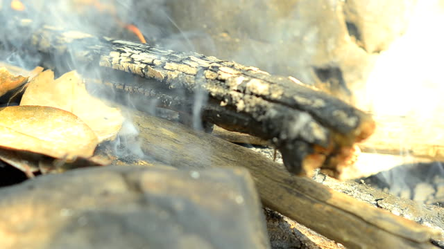 panning: how to boiling water in forest video