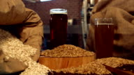 Panning shot of beers and hop grains video
