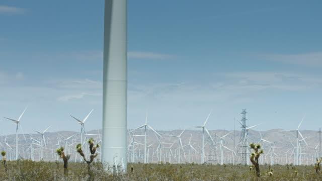 Panning Shot of Desert Wind Farm video