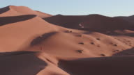 4K panning shot of male tourist admiring the view of endless sand dunes of the Namib desert inside the Namib-Naukluft National Park video