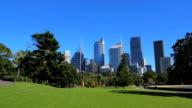 Panning shot of Sydney City Skyline, Royal Botanic Garden (4K/UHD to HD) video