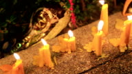 HD Panning: Small candles lit and set on the path near the tree. video