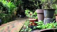 Panning up to home garden brick walk way video
