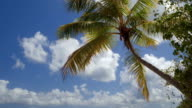 panning video of tropical beach with sound video