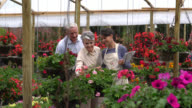 Panning view of couple choosing plants and employee helping them video