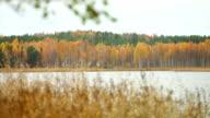 Panoram view of lake video