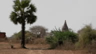 Panorama in Bagan with many temples and stupas video