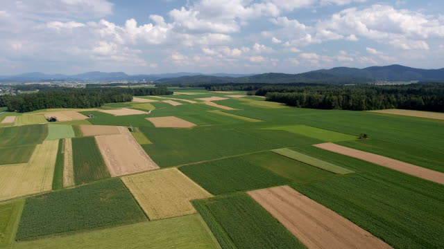 AERIAL: Panorama of fields with various types of agriculture video