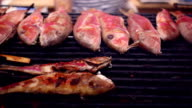 Panorama of grilled red shrimps and other seafood on barbecue. video