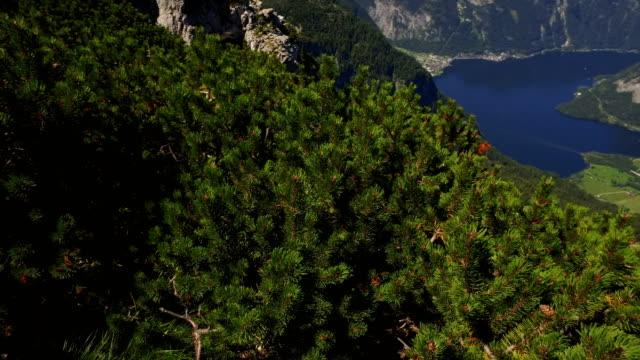 panoramic mountain view from Dachstein to Hallstatt lake video