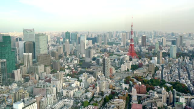 Panoramic view of Tokyo cityscape in autumn season with Tokyo Tower video