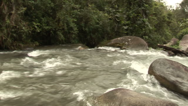 Papa New Guinea River video