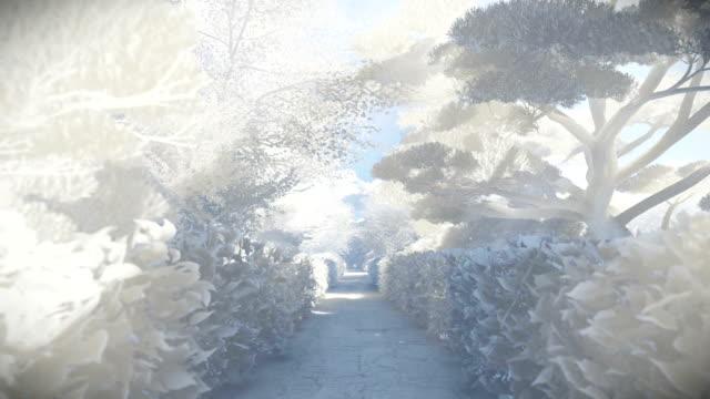 Paper garden in winter, sun shining video
