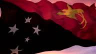 Papua New Guinea Flag video