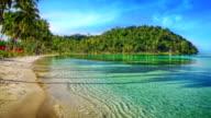 Paradise beach. video