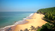 Paradise beach with palm trees, aerial view. Kerala, India. video