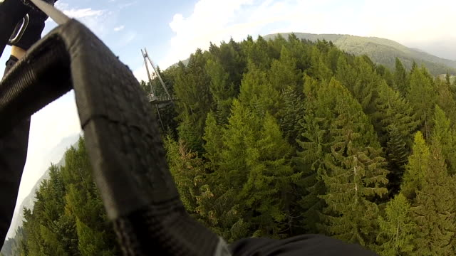 POV paraglider flying over green forest video