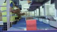 Parcels are Moving on Belt Conveyor at Post Sorting Office. Box POV. video