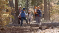 Parents with children enjoying a hike together in a forest video