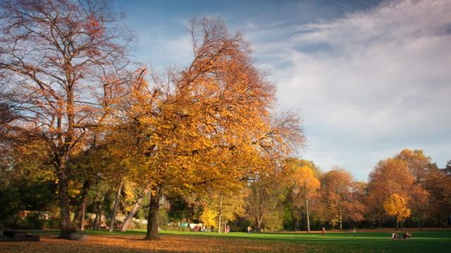 Park at fall video