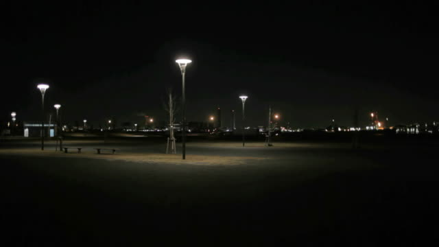 Park at night video