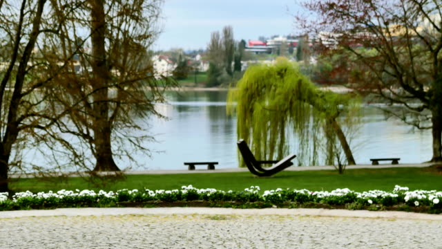 Park on the nature on the island of Mainau in Germany. video