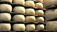 Parmesan cheese industry video