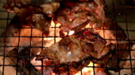 Party Grilling pork and beef (Closeup shot). video