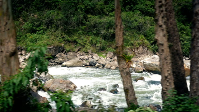 Passing Rocky Jungle River video