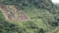 Pasture cut out of hillside rainforest video