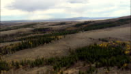 Patchy Forest on Sloping Landscape - Aerial View - Wyoming, Fremont County, United States video