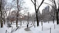 Path Into Snowy Park video