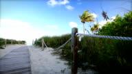 Path On The Beach video