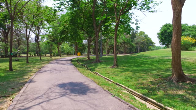 Pathway and Trees in Green Park video