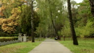Pathway in the park. Autumn daytime. Smooth dolly shot. video