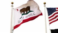 California State Flag video