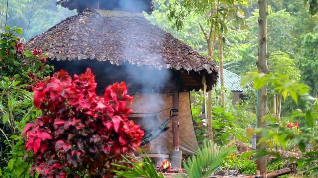 Pavilion in tropical garden video