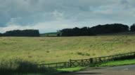 Peaceful Meadow video