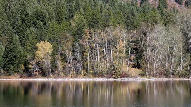 Peaceful Mountain Lake Fall Colors video