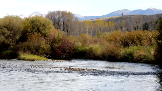 Peaceful Mountain River With Fall Colors video