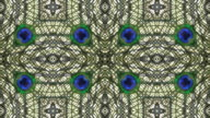Peacock Kaleidoscope, loopable video