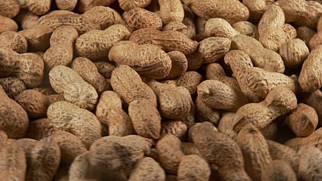 Peanuts, arachis hypogaea, Fruits turning, Slow Motion 4K video