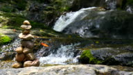 MS PL Pebble tower zen and balance near waterfall in forest nature background video