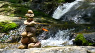 MS ZO Pebble tower zen and balance near waterfall in forest nature background video