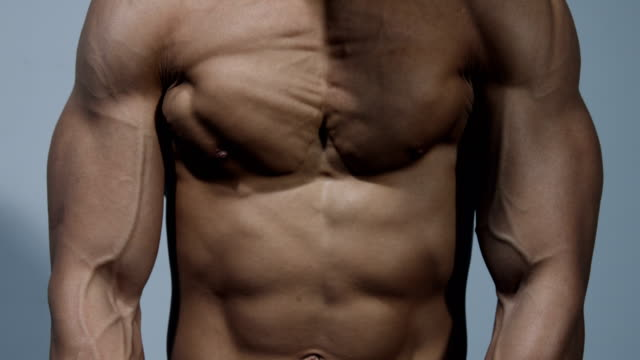Pectoral Muscle Close Up video